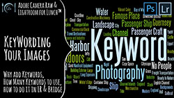 Adobe Camera Raw and Lightroom for Lunch Keywording Images in Bridge and Lightroom