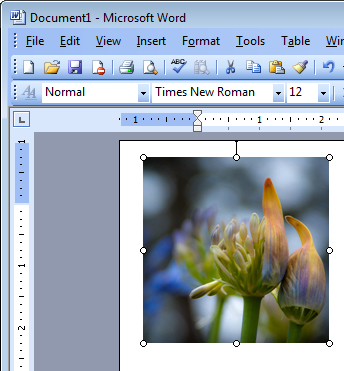 word image insert default setting Permanently fix Words image insert behavior