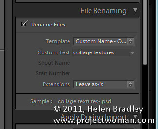 Lightroom import dialog 5 things to know 4 5 Things to know about the Lightroom Import dialog