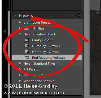 lightroom presets tip 4 5 Top Tips for Lightroom Develop Presets