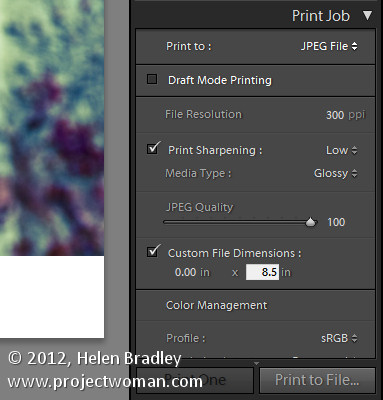 Lightroom photo frame step3 Add a Photo Border in Lightroom