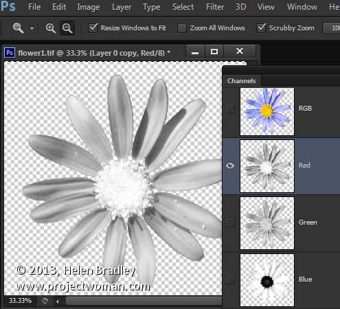 Copy a Channel to a Layer in Photoshop « projectwoman com