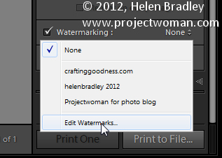Custom lightroom image watermark 3 Lightroom Tip   Using Image Watermarks