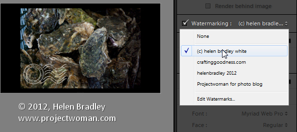 Custom lightroom image watermark 6 Lightroom Tip   Using Image Watermarks