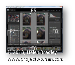 Lightroom Show Hide Panel Lightroom Tip   Show/Hide Panel Shortcuts