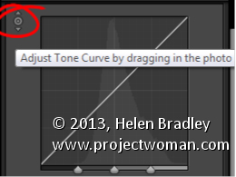 Lightroom Make the Tone Curve a Point Curve 2 Lightroom Tip   Convert a Tone Curve to a Point Curve