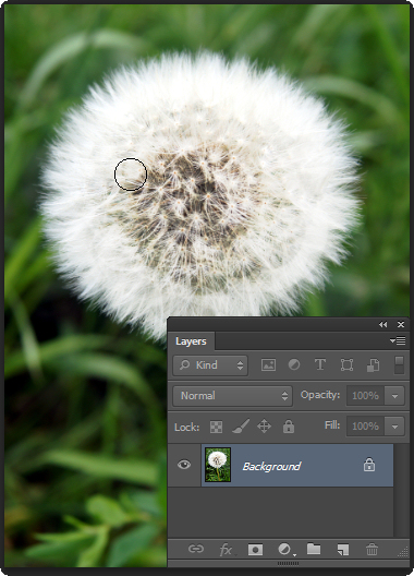 Image1 Photoshop Quick tip: Change from Dodge to Burn Tool