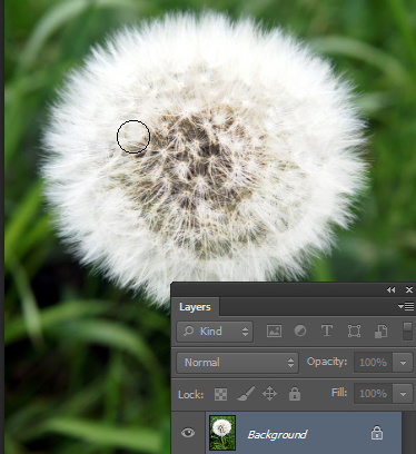 opener22 Photoshop Quick tip: Change from Dodge to Burn Tool