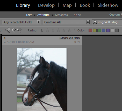 Find files by name in Lightroom 3 Find files by name in Lightroom